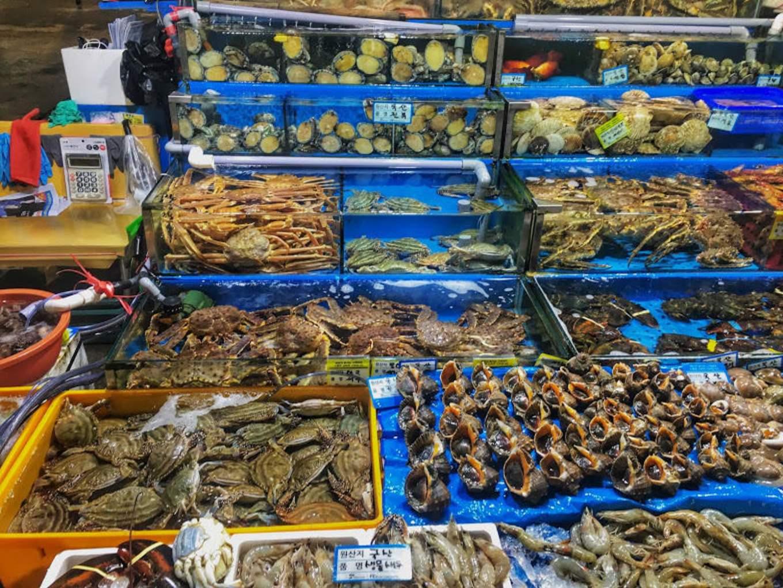 hải sản là một món trong ẩm thực seoul phải thử