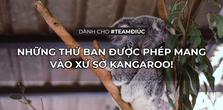 danh cho teamdiaustralia nhung thu ban duoc phep mang vao australia cover final