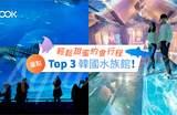 【韓國旅遊】輕鬆甜蜜約會行程:盤點Top 3 韓國水族館!
