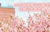 【2020韓國櫻花前線】韓國賞櫻15景點交通、花期資訊懶人包