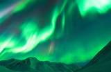 【美國阿拉斯加州極光之旅】阿拉斯加州戶外活動景點、行程、住宿推薦