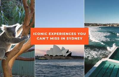 Whale Watching, Bondi Beach Walk, Sushi Donuts And Other Iconic Things To Check Out In Sydney