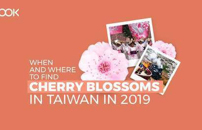 Taiwan's 2019 Cherry Blossom Forecast And Best Viewing Spots