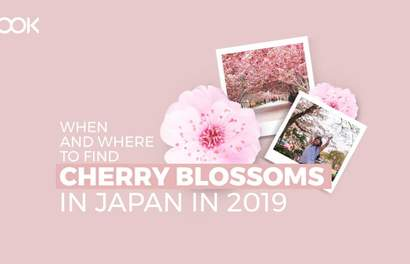 Japan's 2019 Cherry Blossom Forecast And Best Viewing Spots