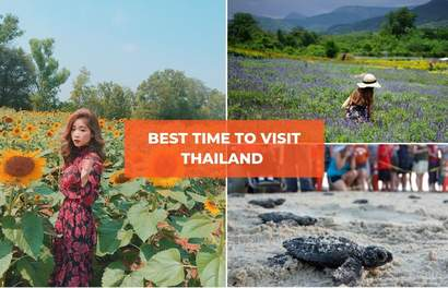 Best Time To Visit Thailand For Sunflower Fields, Floating Lanterns, Turtle Releasing & More!