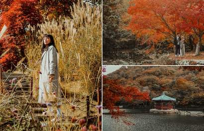 17 Photos That'll Convince You To Explore South Korea This Autumn Season