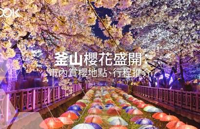【2020追櫻攻略】釜山櫻花盛開:市內賞櫻地點、行程推介