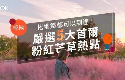 【首爾旅遊】搭地鐵都可以到達!嚴選5大首爾粉紅芒草熱點