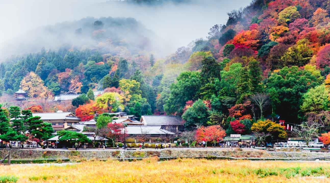 Escape from the bustle of city life in Arashiyama, Kyoto
