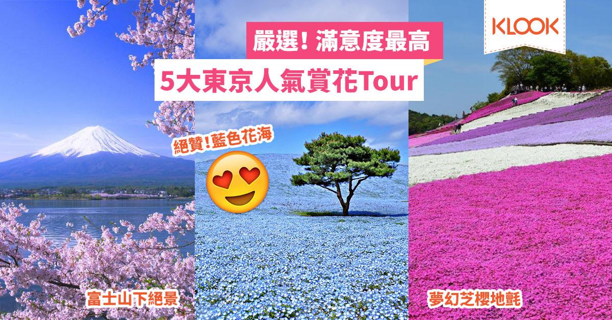 【2018最新】東京出發 賞櫻+花海一日遊 在地人好評推薦5選 - KLOOK