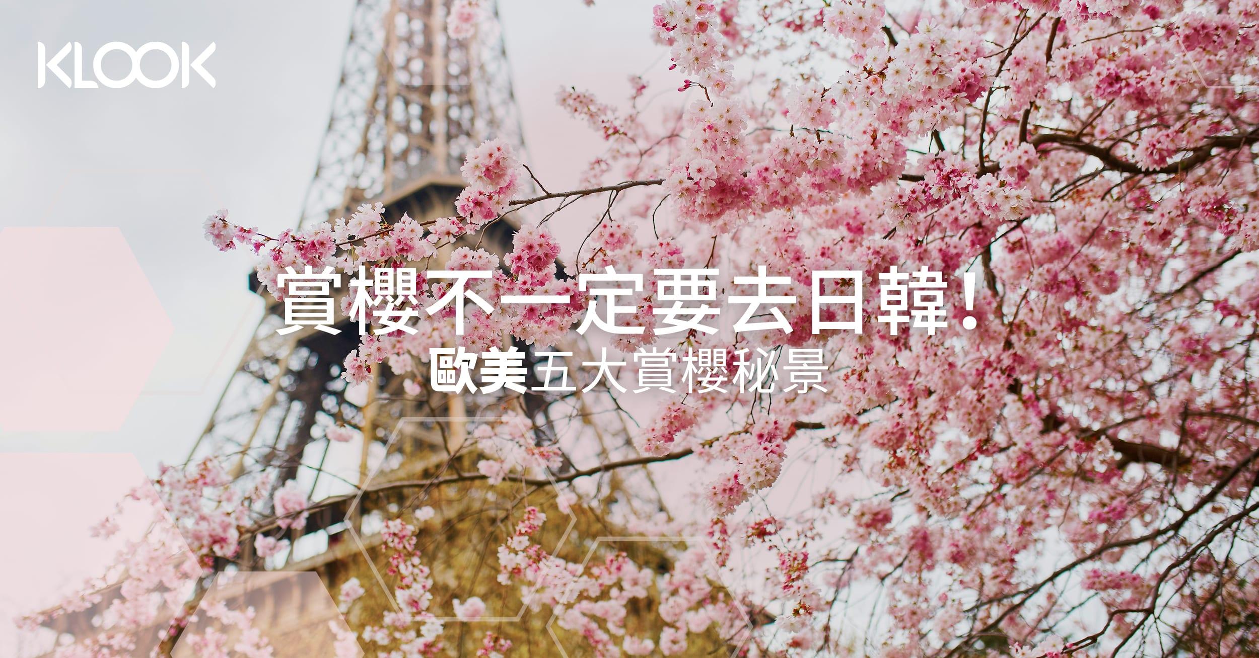 190220 Blog cover cherry blossom7