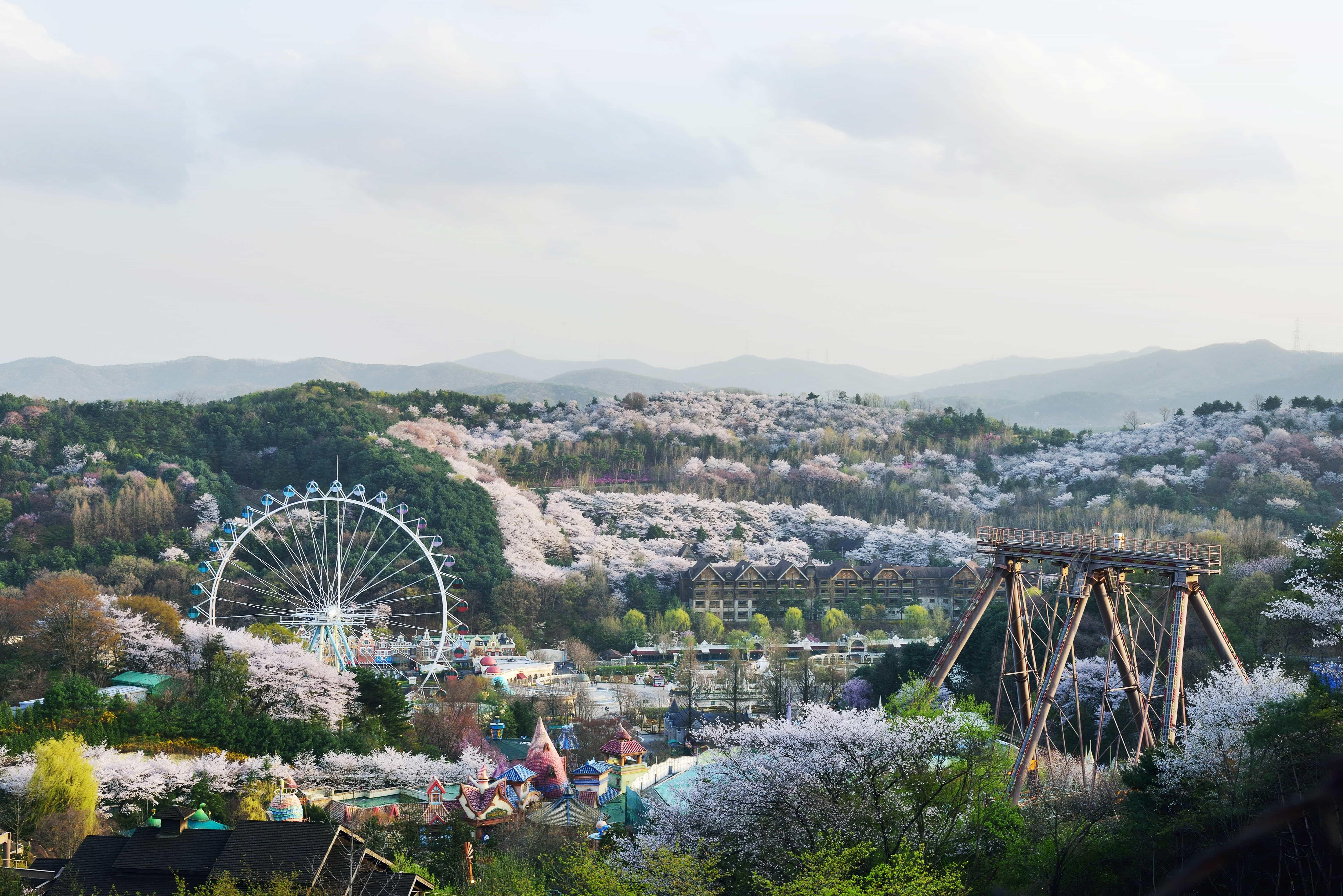 เอเวอร์แลนด์ สวนสนุก เกาหลีใต้
