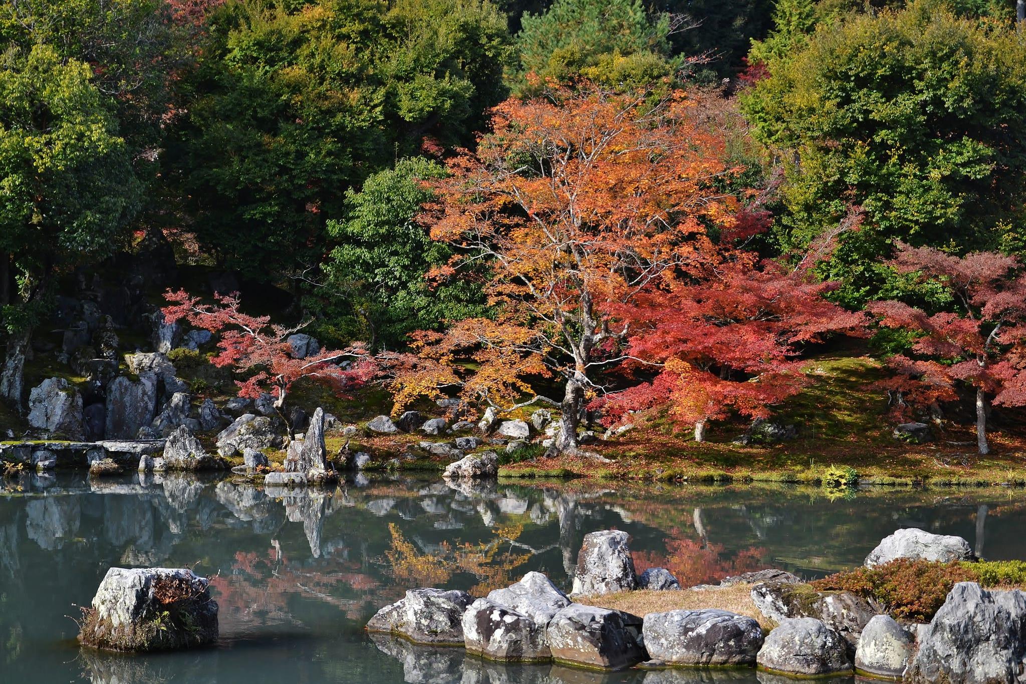 วัดเทนริวจิ(Tenryu-ji)