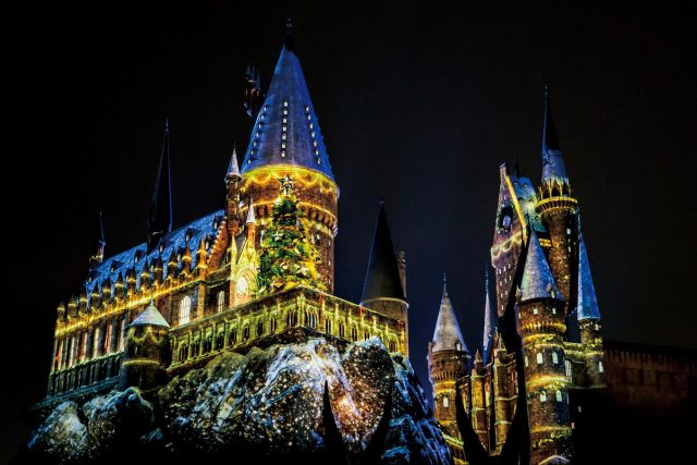 HARRY POTTER characters, names and related indicia are © & ™ Warner Bros. Entertainment Inc. Harry Potter Publishing Rights © JKR. (s19)