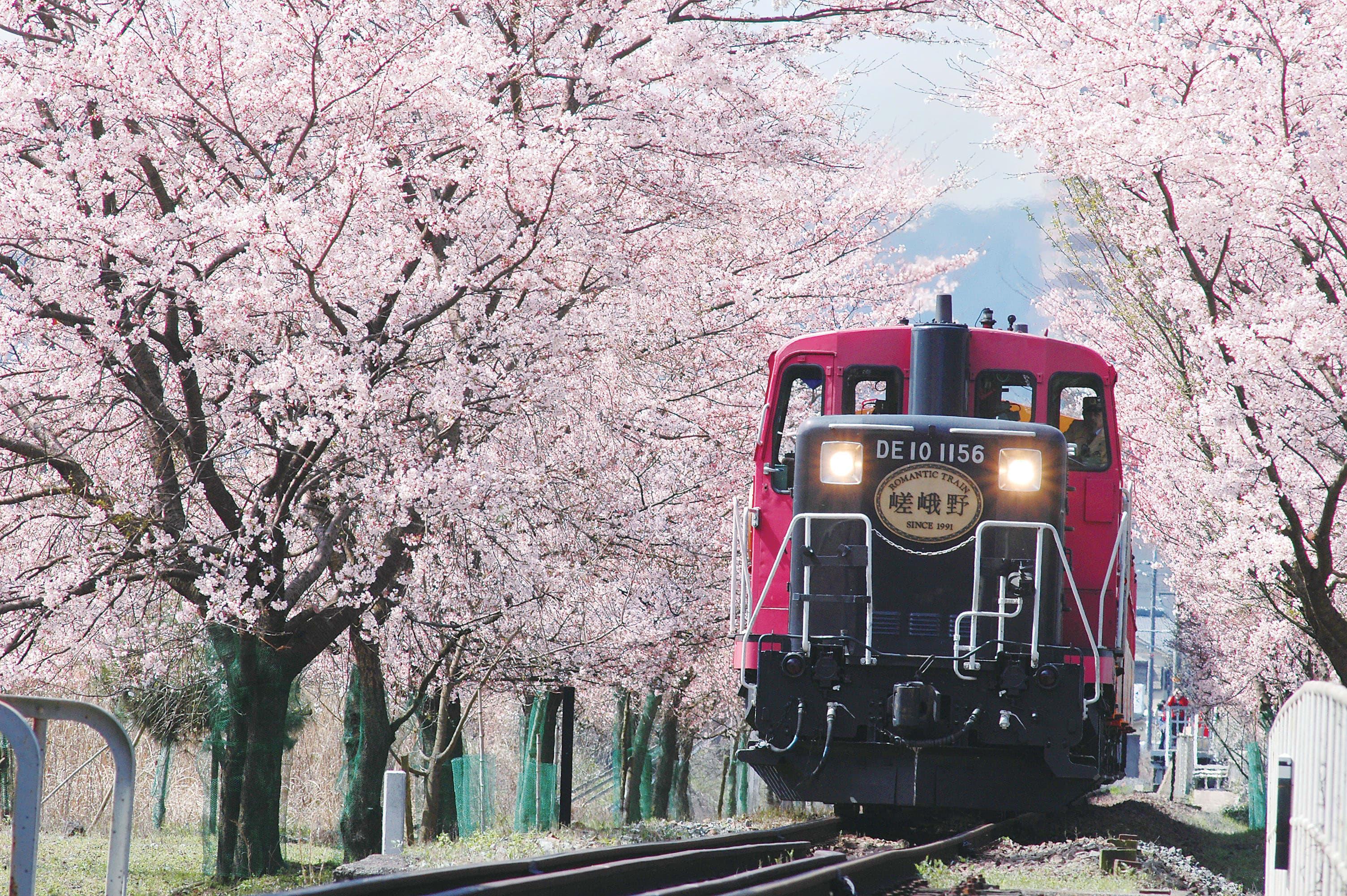 รถไฟสาย sagano