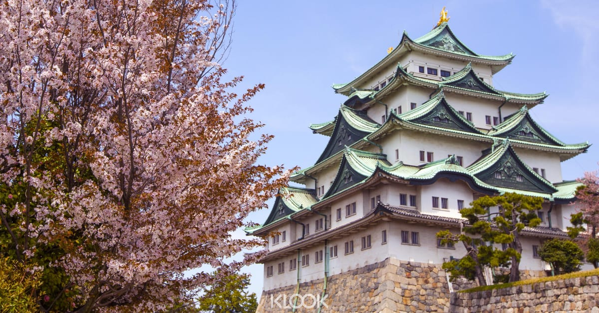 nagoya castle ซากุระ