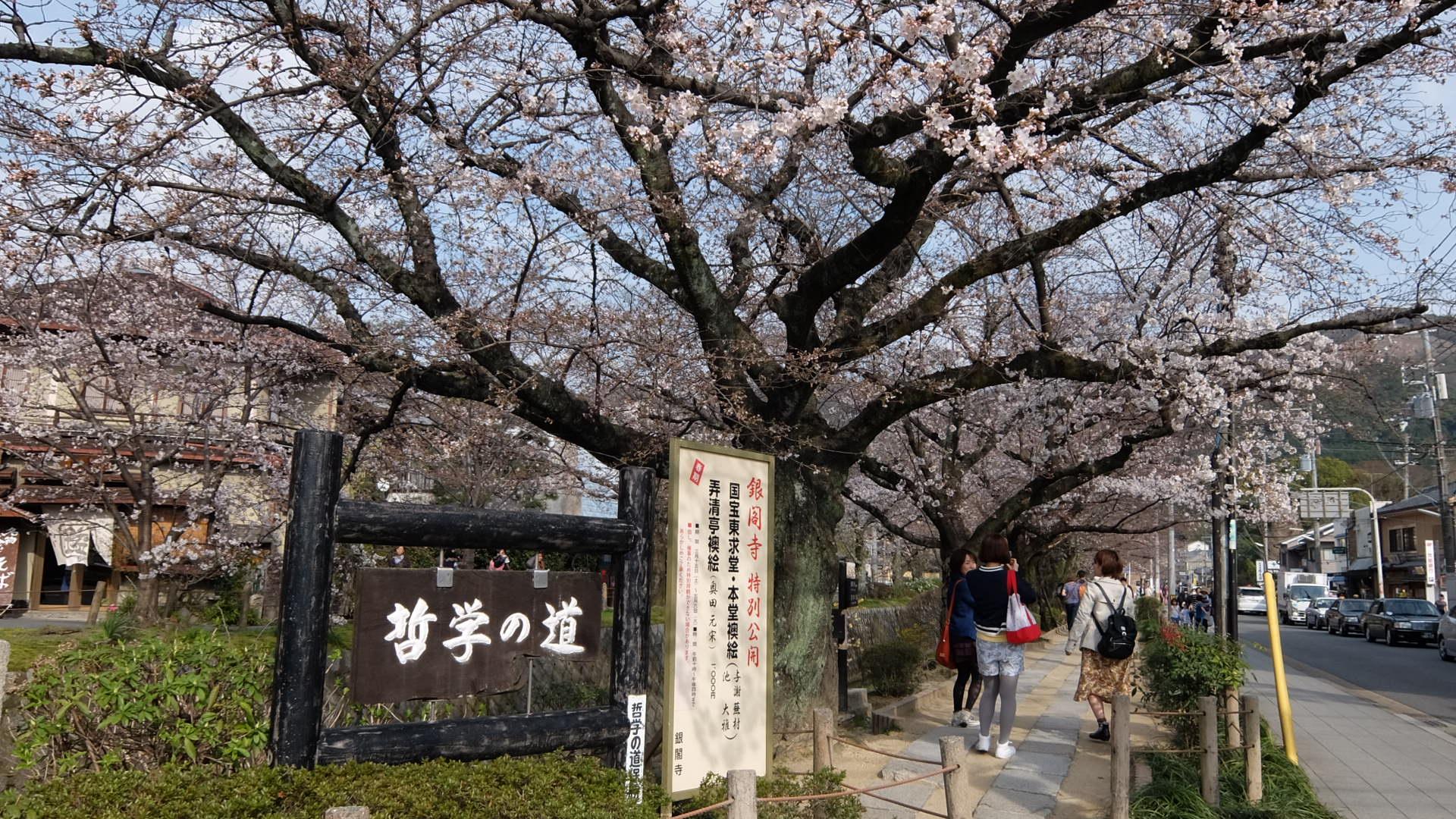 圖片來源:FXで儲けて京都旅行
