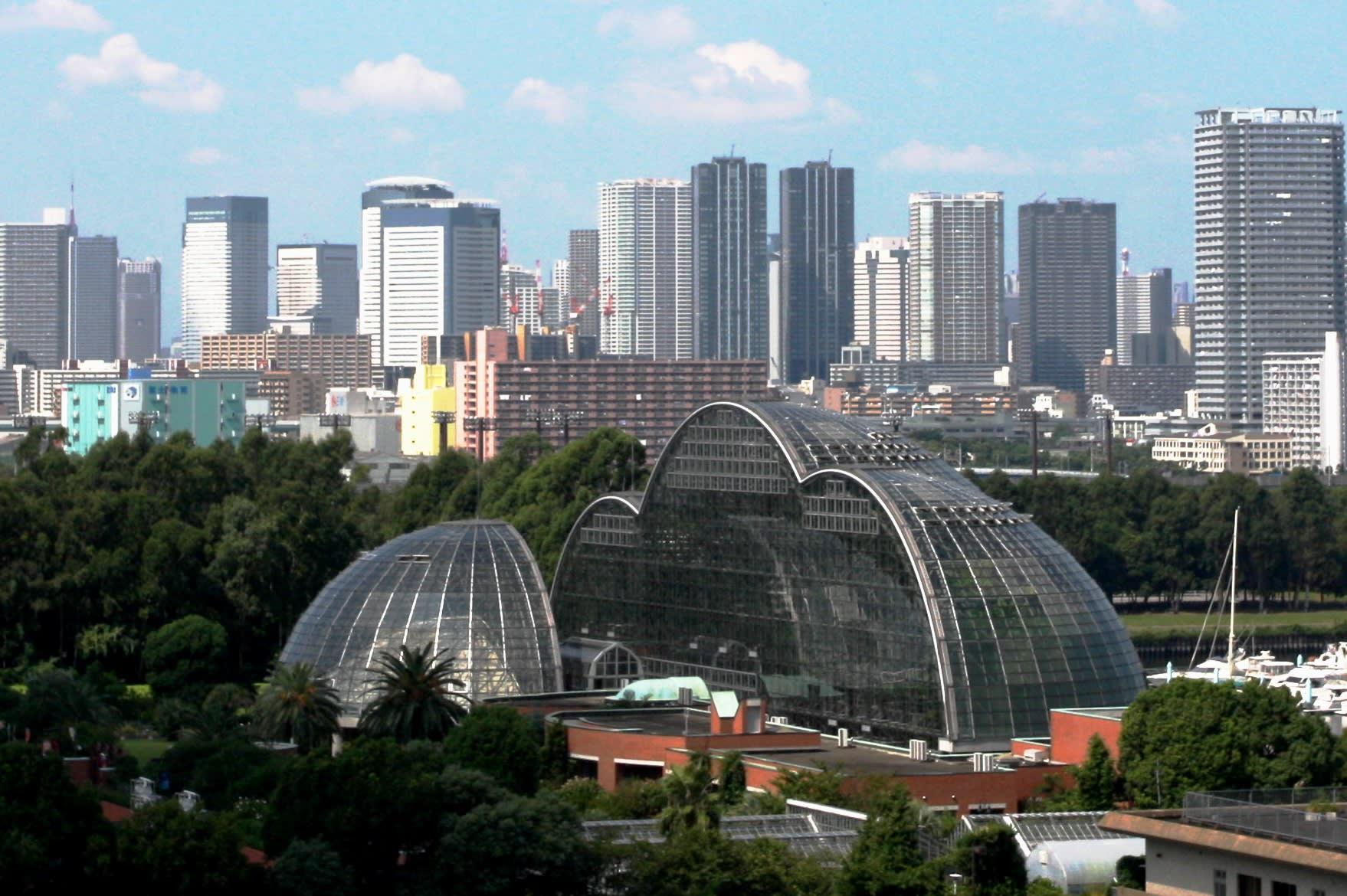 東 京 水 泥 叢 林 中 的 熱 帶 雨 林