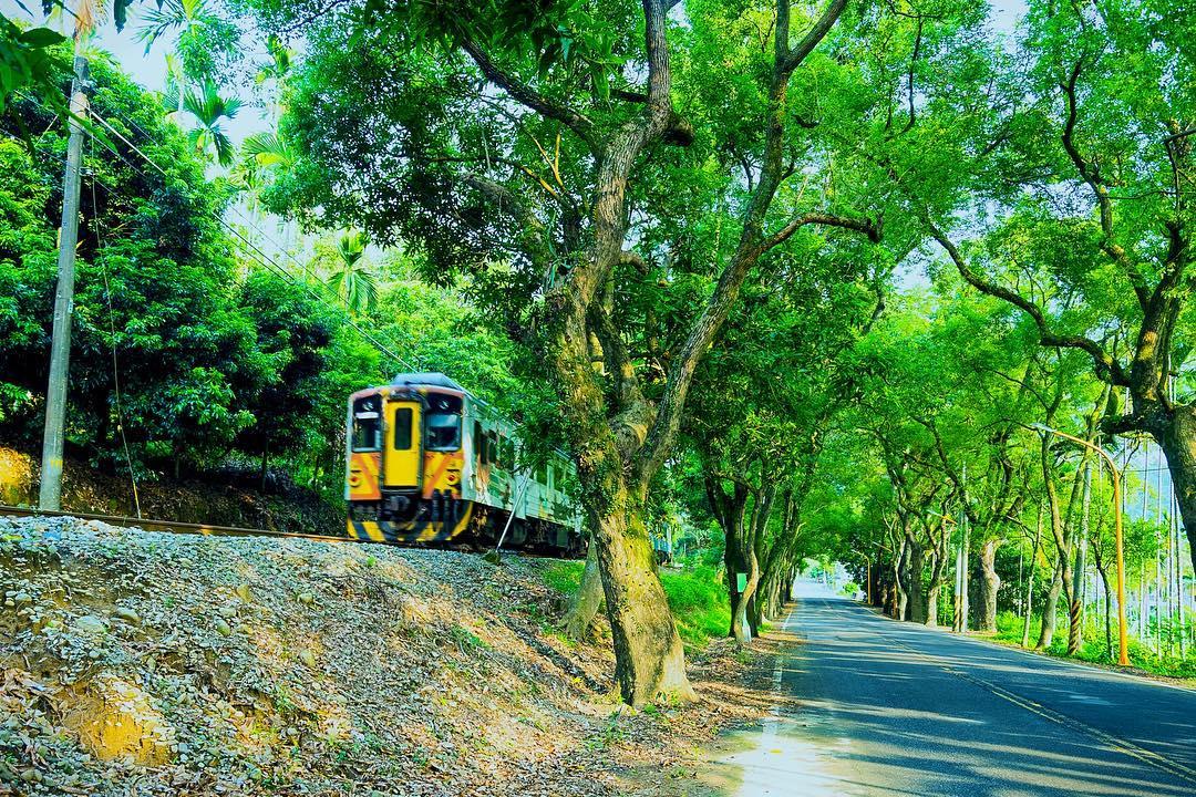 如果時間恰好,還有機會看到火車駛過身旁。(圖片來源/Instagram-ryanyang_)