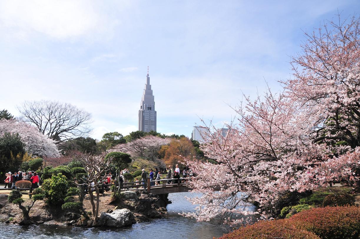 圖片來源: blogs.yahoo.co.jp