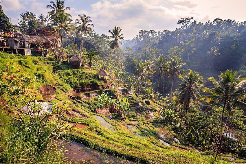 印 尼 烏 布 擁 有 原 始 的 自 然 人 文 景 觀 , 這 裡 四 處 都 可 以 看 見 外 國 的 蹤 跡 , 可 想 而 知 , 西 方 人 對 這 神 秘 國 度 有 多 麼 喜 愛 。