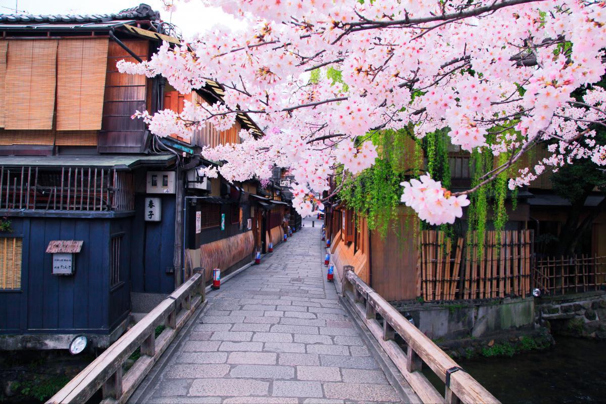 圖片來源: ZEKKEI Japan