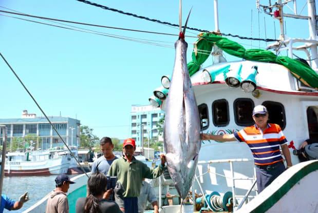 屏東黑鮪魚文化觀光季「第一鮪」上岸!
