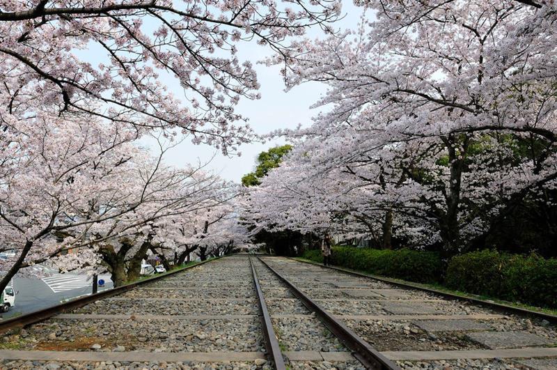 蹴上傾斜鐵道(照片來源:kin@Flickr)https://goo.gl/9M3XKL