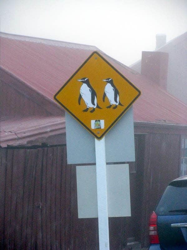 交 通 標 誌 。