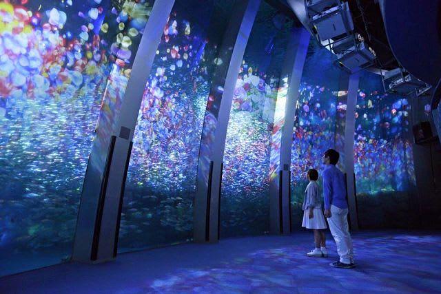 圖 / 橫 濱 八 景 島 海 島 樂 園 ~ 海 ・ 島 ・ 生 物 的 主 題 樂 園 臉 書