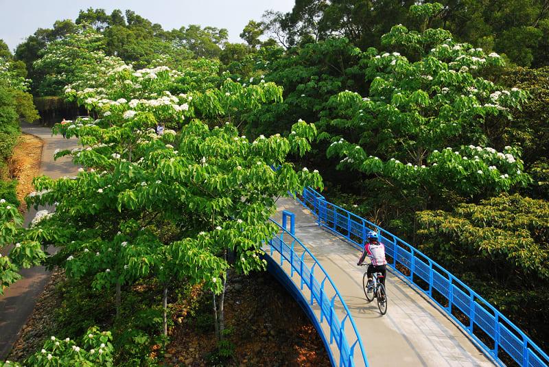 九華山天空步道 ( 圖片來源: 痞客邦 )