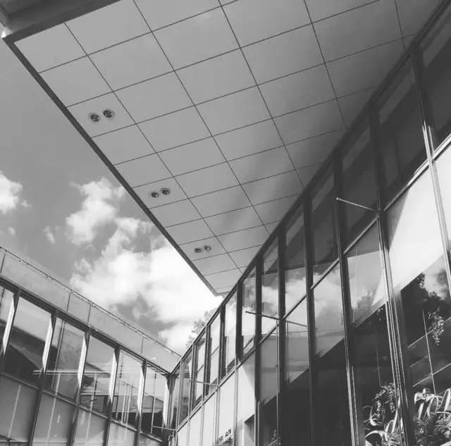 Pic︱instagram@ybai