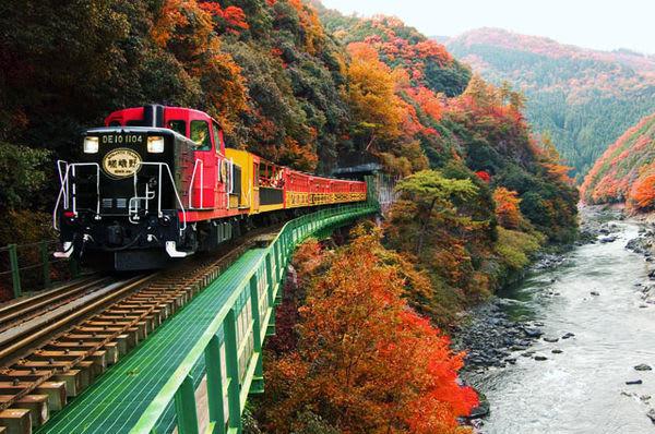 搭 乘 古 老 觀 光 小 火 車 欣 賞 嵐 山 楓 紅