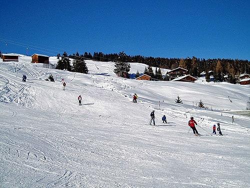 初 學 者 的 雪 道 斜 坡 度 較 低,建 議 可 以 在 初 學 者 區 多 練 習。