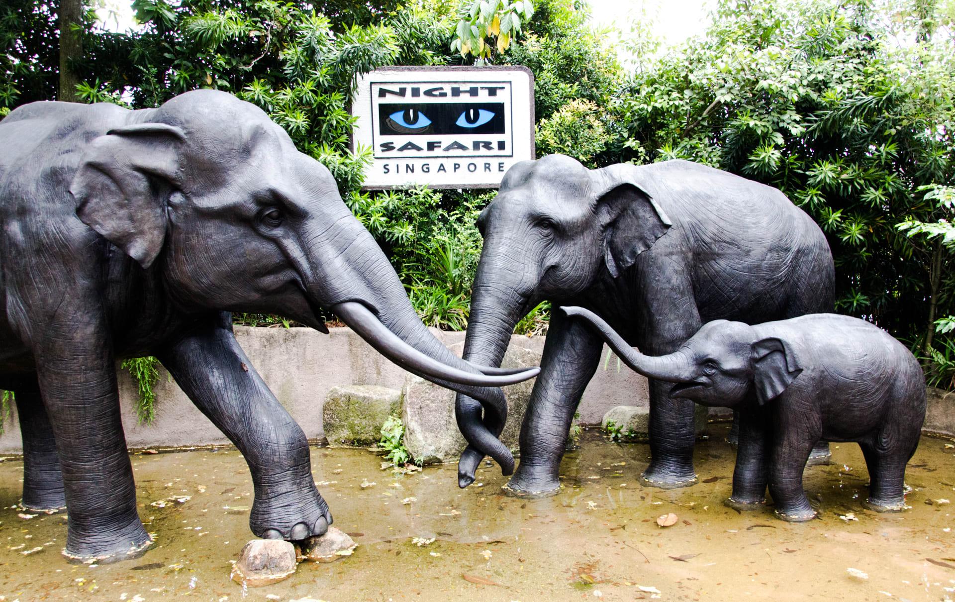 新加坡夜間動物園,來源:Flickr,Murphy Chen。