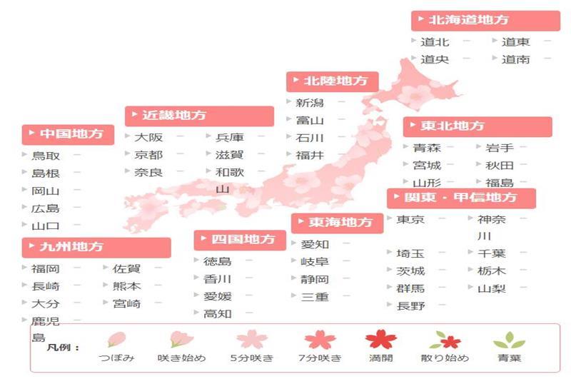 """桜開花予想(圖片來源:日本氣象協會)<a href=""""https://tenki.jp/sakura/"""">https://tenki.jp/sakura/</a>"""