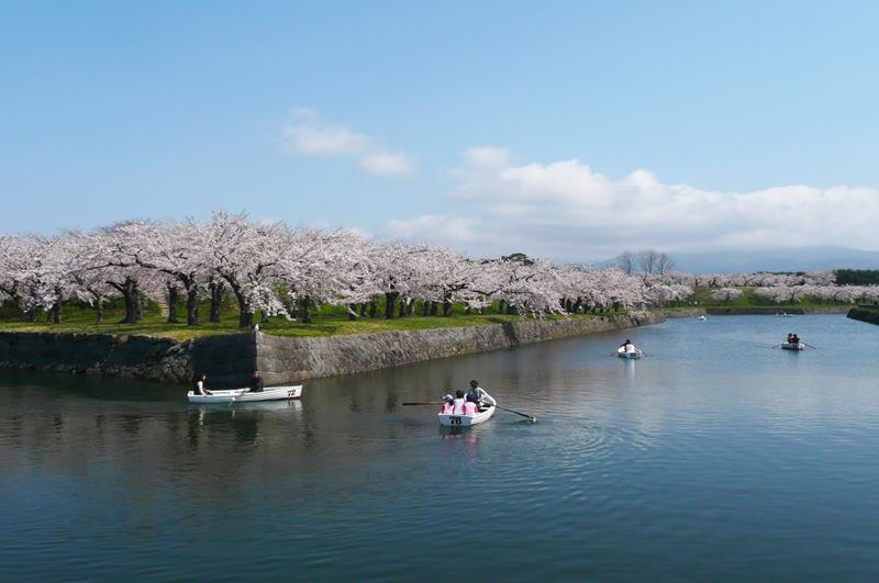 五稜郭公園(照片來源:函館市觀光資訊官方網站Hakodate Photo Library)https://goo.gl/zvHEcD