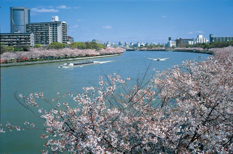 毛馬櫻之宮公園(照片來源:大阪觀光局PHOTO LIBRARY) http://www.osaka-info.jp/photo_library/