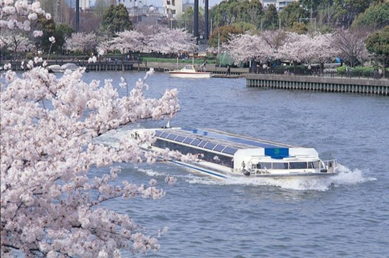 大阪水上巴士與河岸旁的毛馬櫻之宮的櫻花盛景(照片來源:大阪觀光局PHOTO LIBRARY)http://www.osaka-info.jp/photo_library/