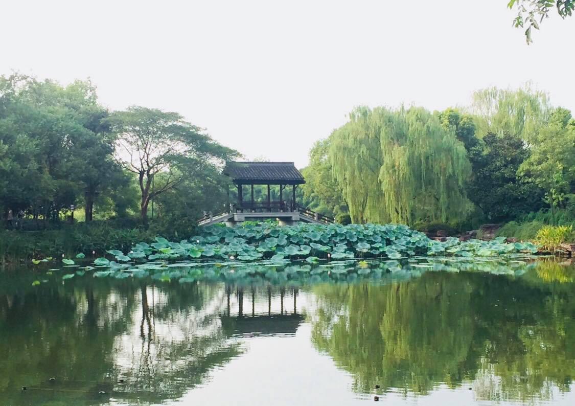 杭州西溪溼地