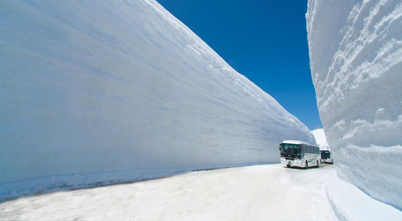 (照片來源:Tateyama Kurobe Alpine Route官網)https://www.alpen-route.com/tw/