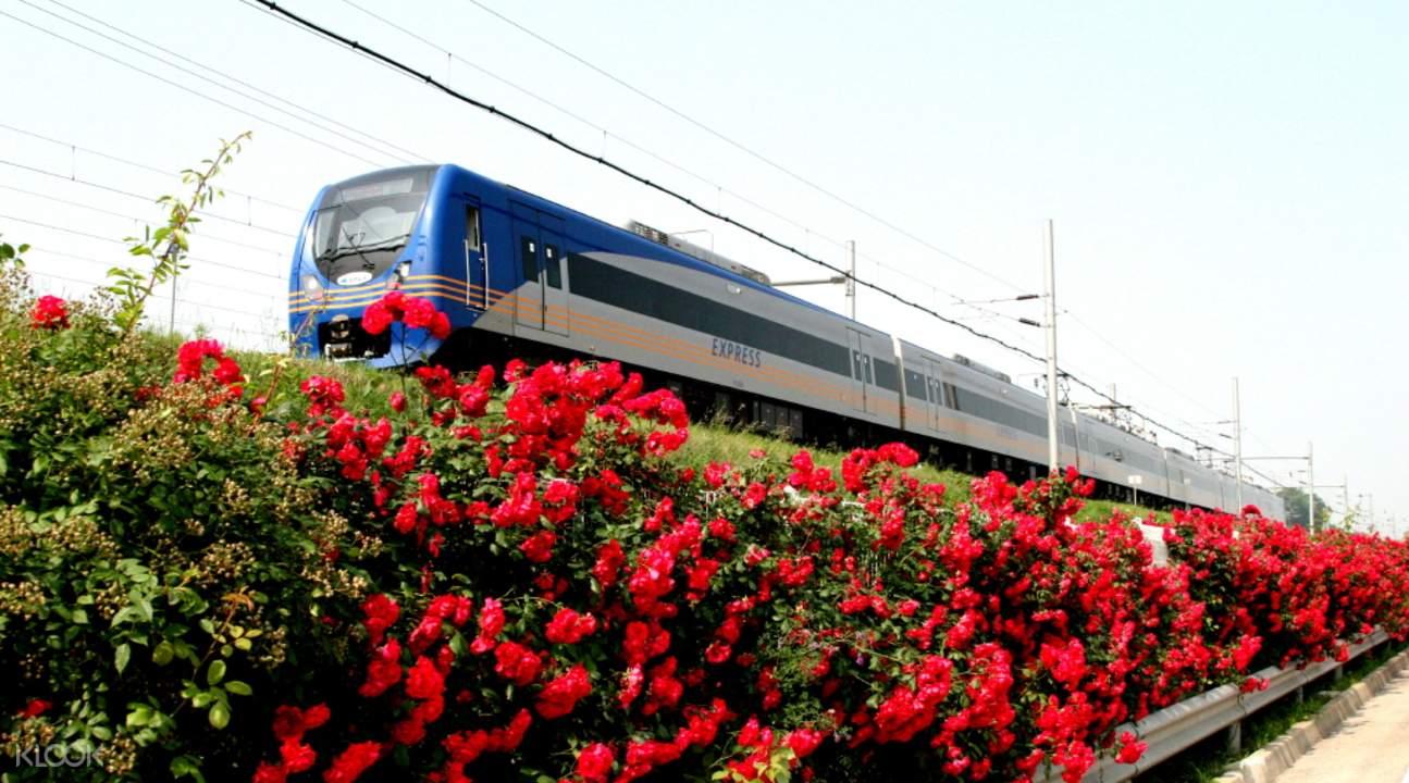 首爾AREX機場快線,韓國國內唯一橫跨江河與大海的鐵路。