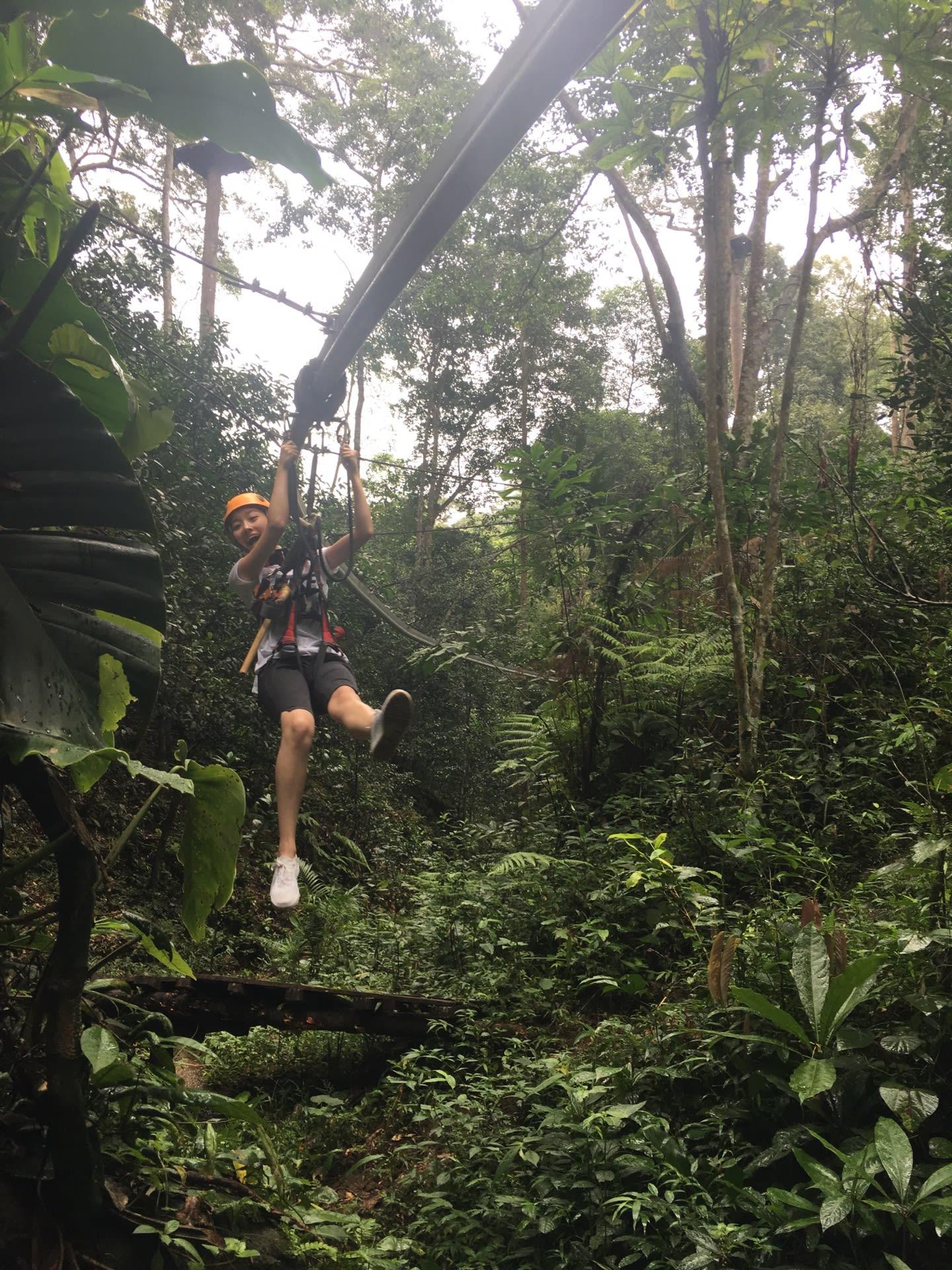 遊蕩於叢林之間,刺激的飛梭體驗。來源:KLOOK。