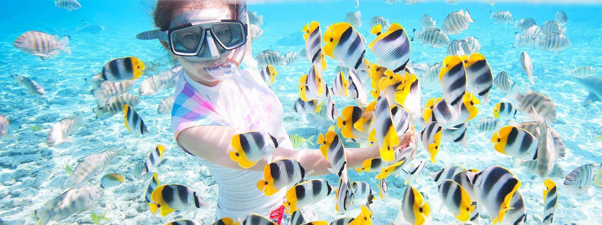 阿嘉島浮潛
