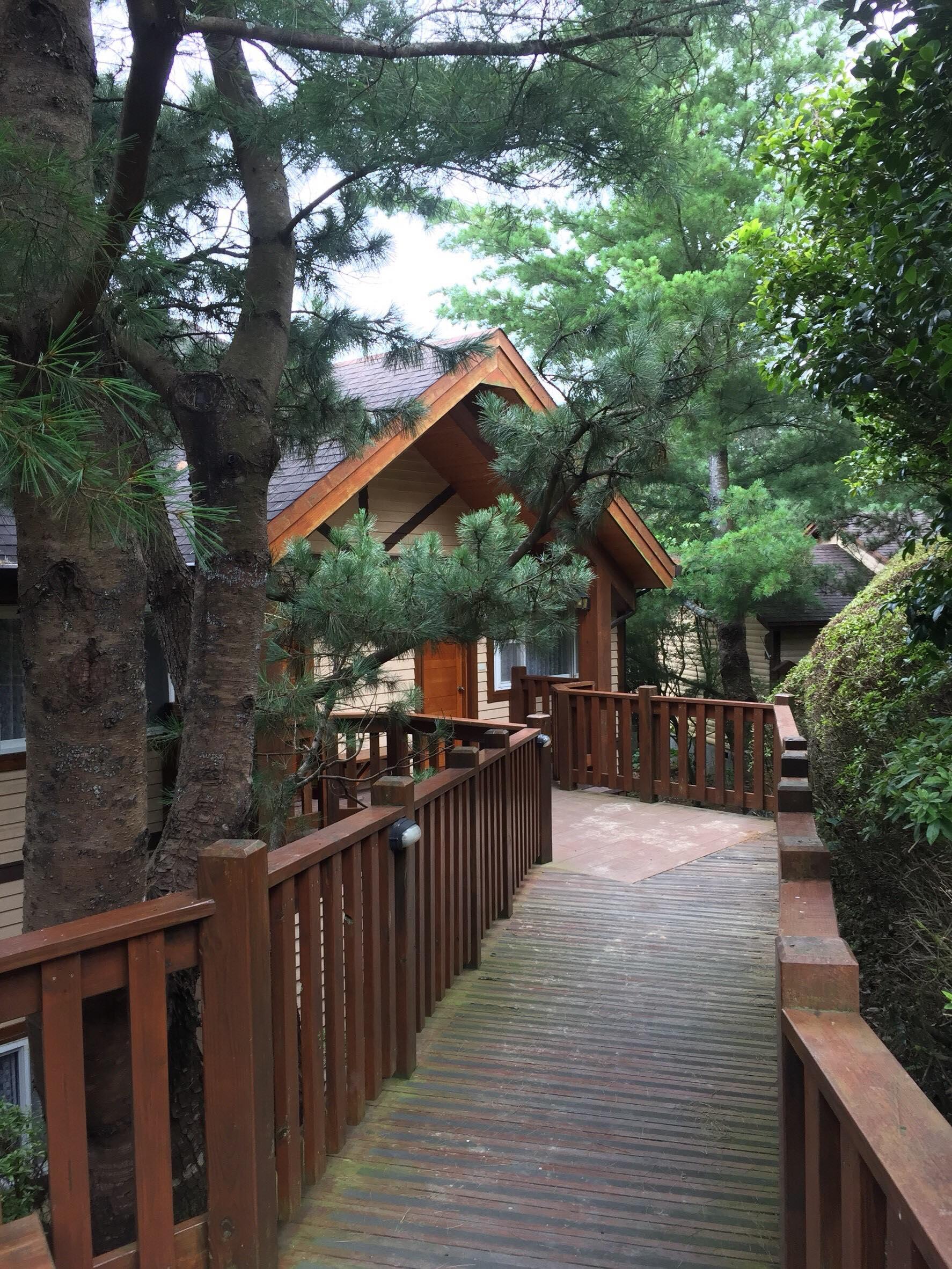 樹林包圍中的小木屋。