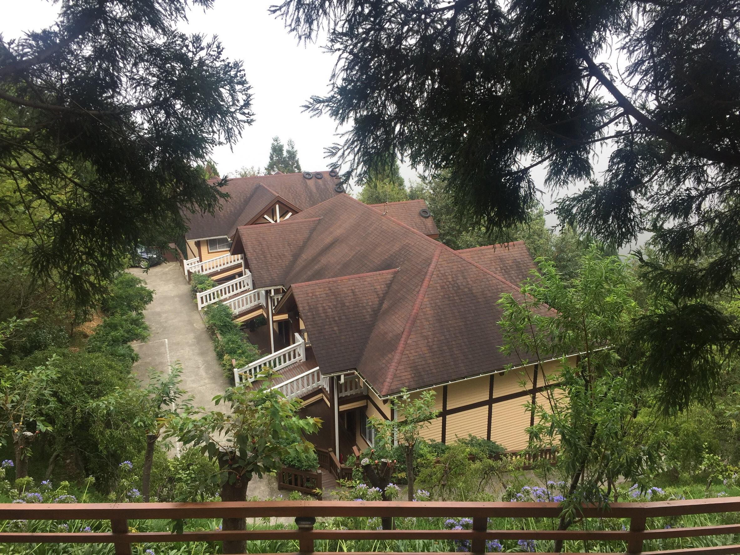 並排在樹林裡的小木屋,像童話故事一般的紅屋頂黃磚瓦。