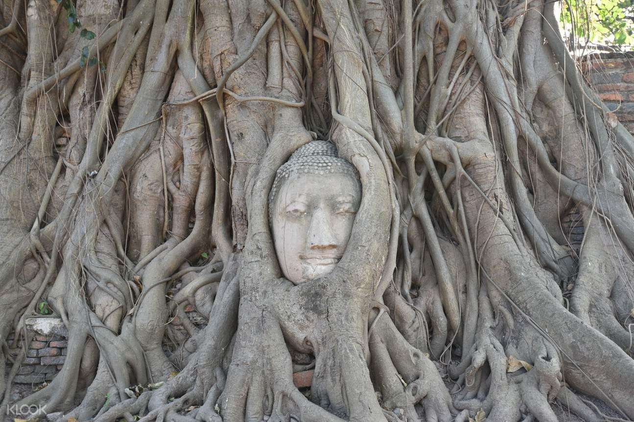 瑪哈泰寺不可錯過的景點。來源:KLOOK。