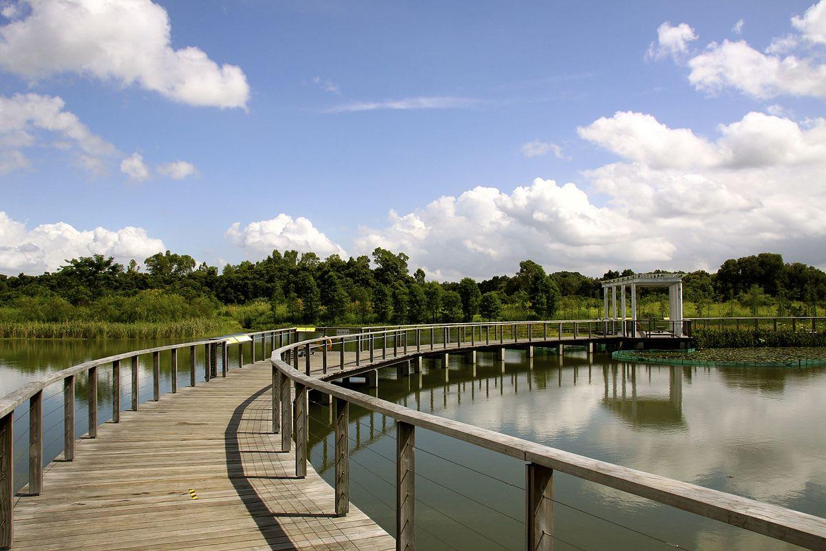 香港濕地公園 來源:wikimedia@Matthias Süßen