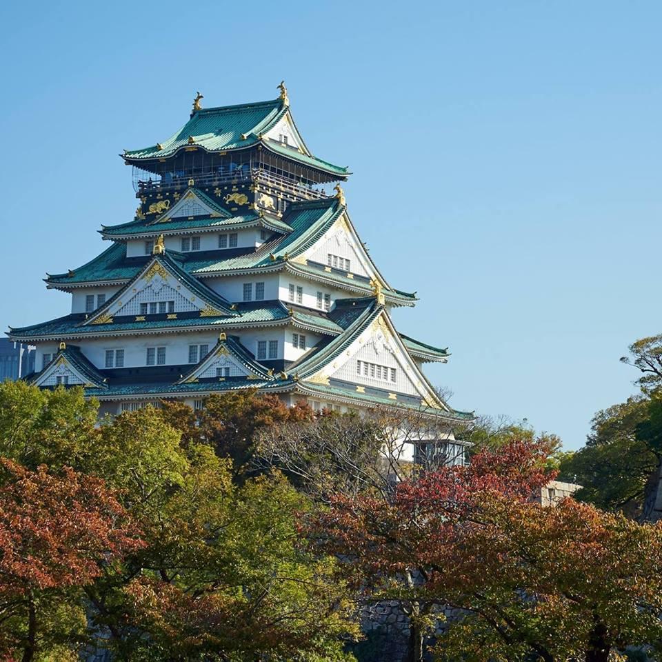 大阪城公園,圖片取自大阪城公園官方FB粉絲團。