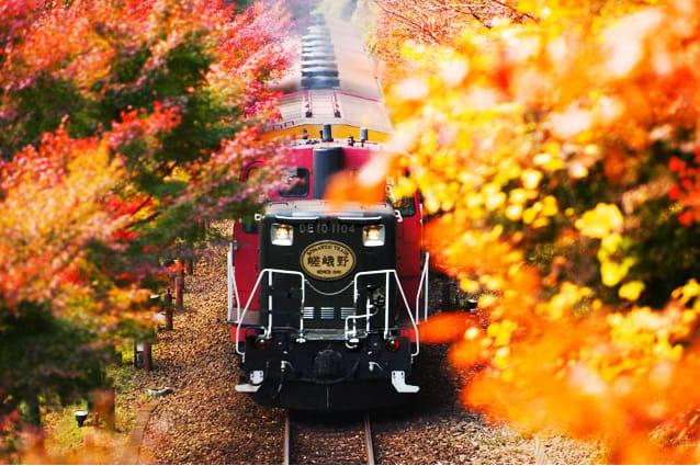 嵐山小火車賞楓,圖片取自嵯峨野觀光鐵道官網。
